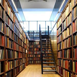 Библиотеки Мамадыша